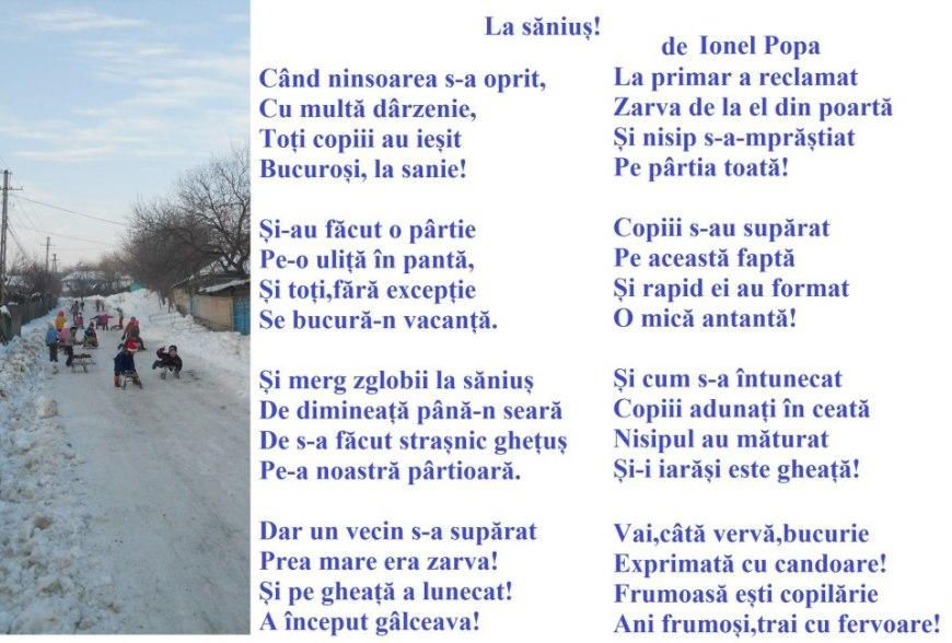 Ionel Popa-La sanius